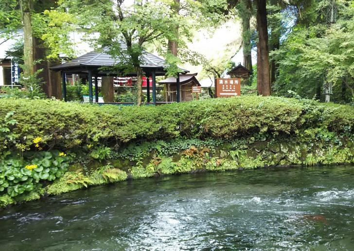 ナニコレ珍百景で熊本県南阿蘇村にある珍百景が紹介されます