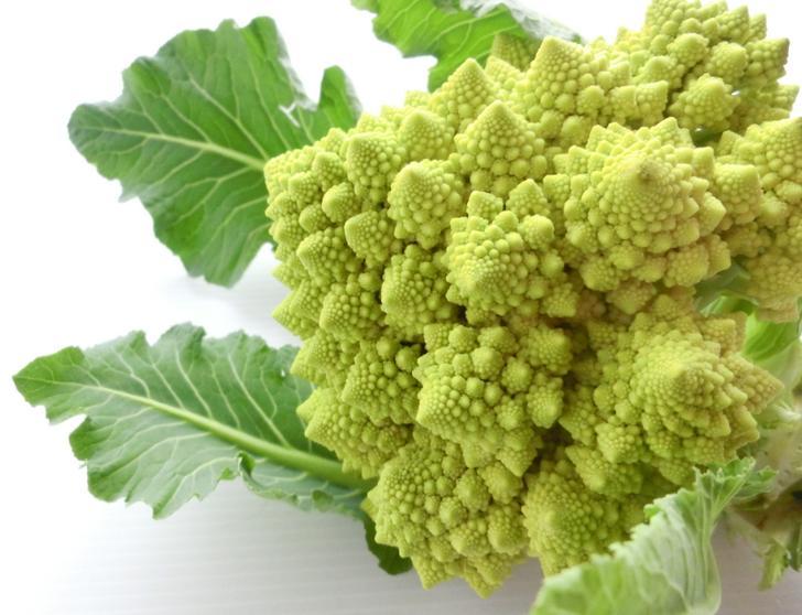 ロマネスコも世界一美しい野菜と言われている