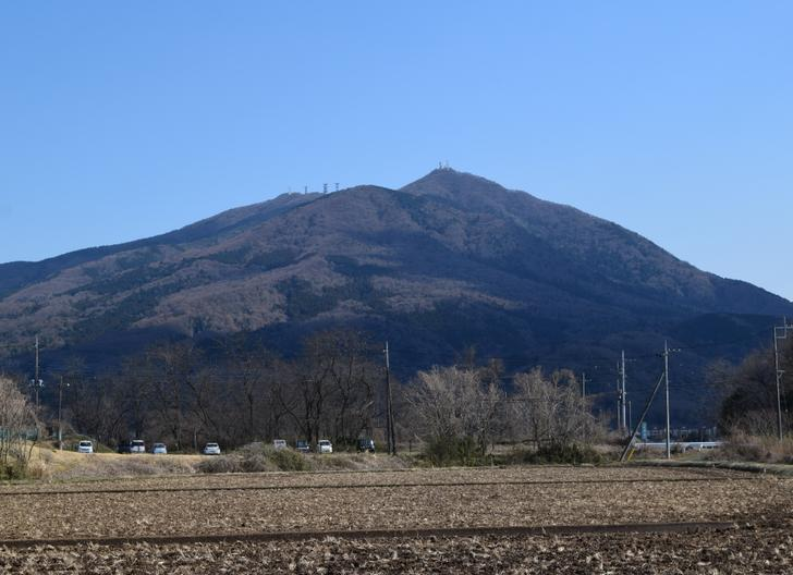 茨城県はサツマイモの耕作面積・生産量ともに全国二位