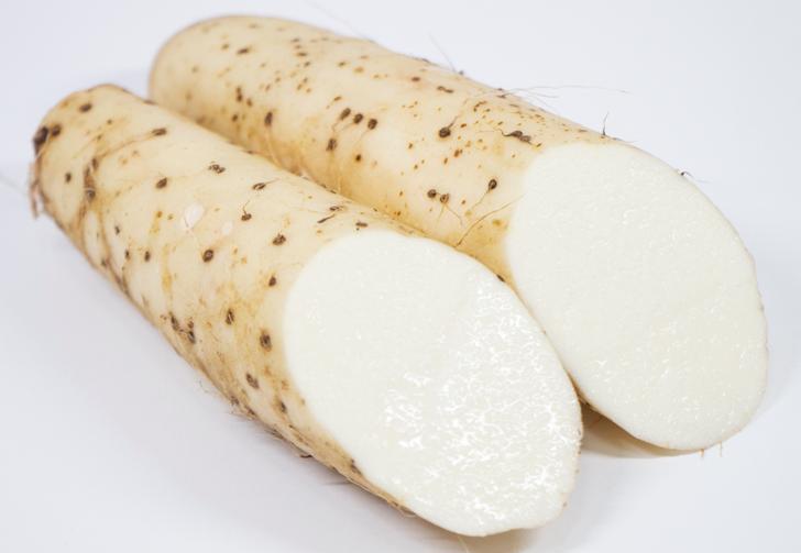 大和芋の新品種が「ぐんまとろりん」で棒状の大和芋です