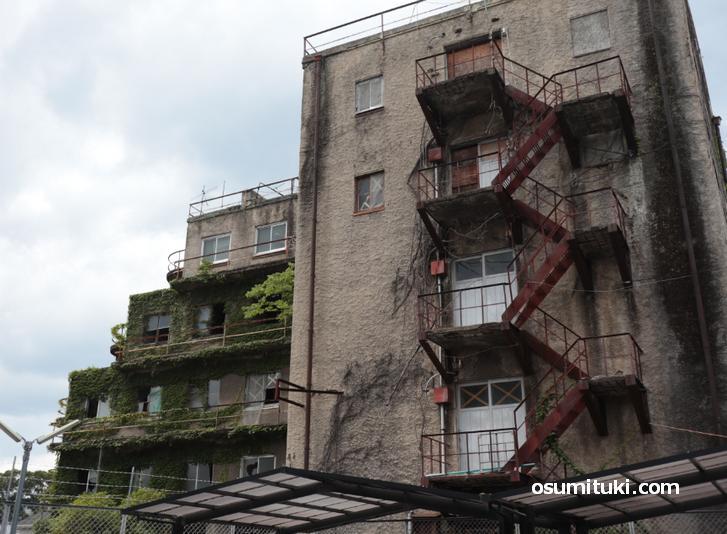 ツタが絡む建物はもう何年も使われていません