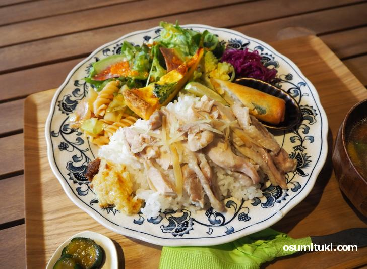 サラダやキッシュにマカロニが盛られたワンプレートランチ