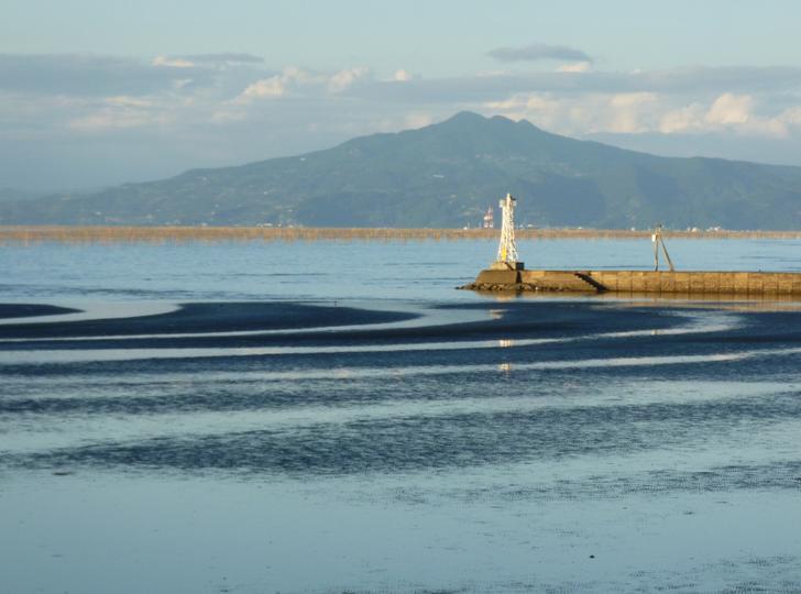 川口産大和蛤は有明海の干潟で水揚げされている