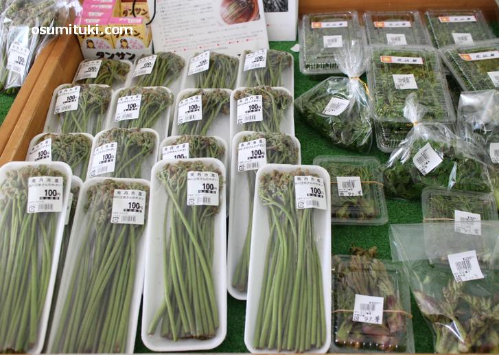 4月は山菜の販売が多くなります