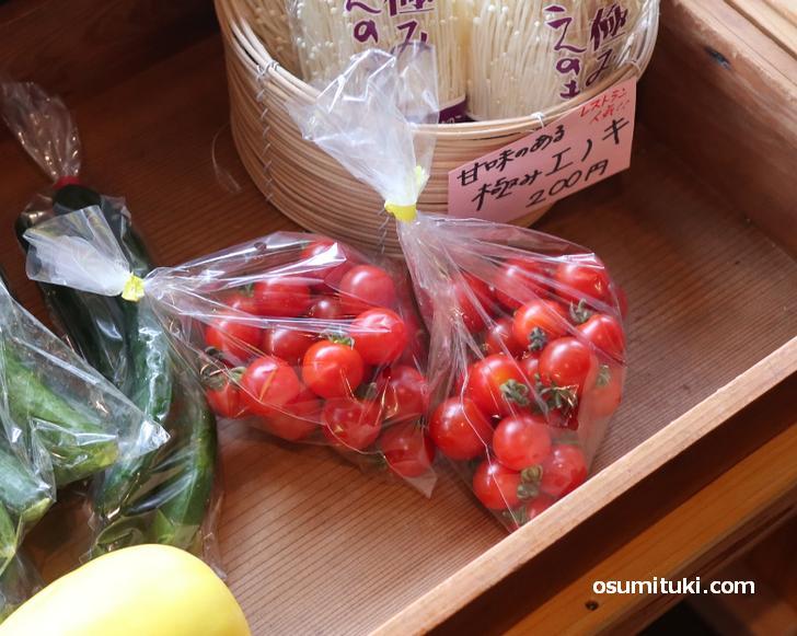 中本千絵さんは滋賀県で出会ったミニトマトに感動して八百屋を開業