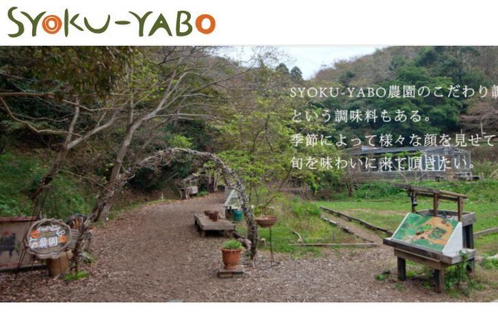 SYOKU-YABO農園(ショクヤボ農園)が『ナニコレ珍百景』で紹介