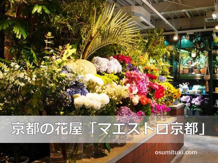 花屋の中にあるカフェ「pbp」