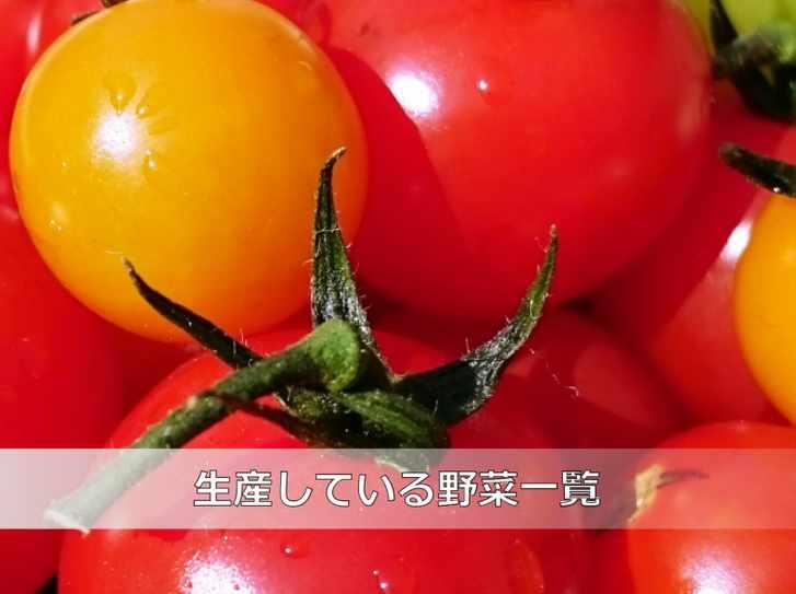ファーム塚田で生産している野菜の一覧