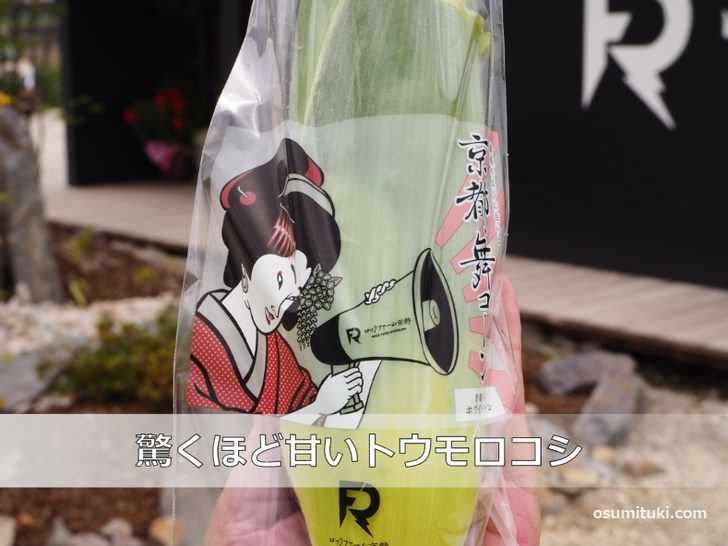 京都舞コーンは驚くほど甘いトウモロコシ