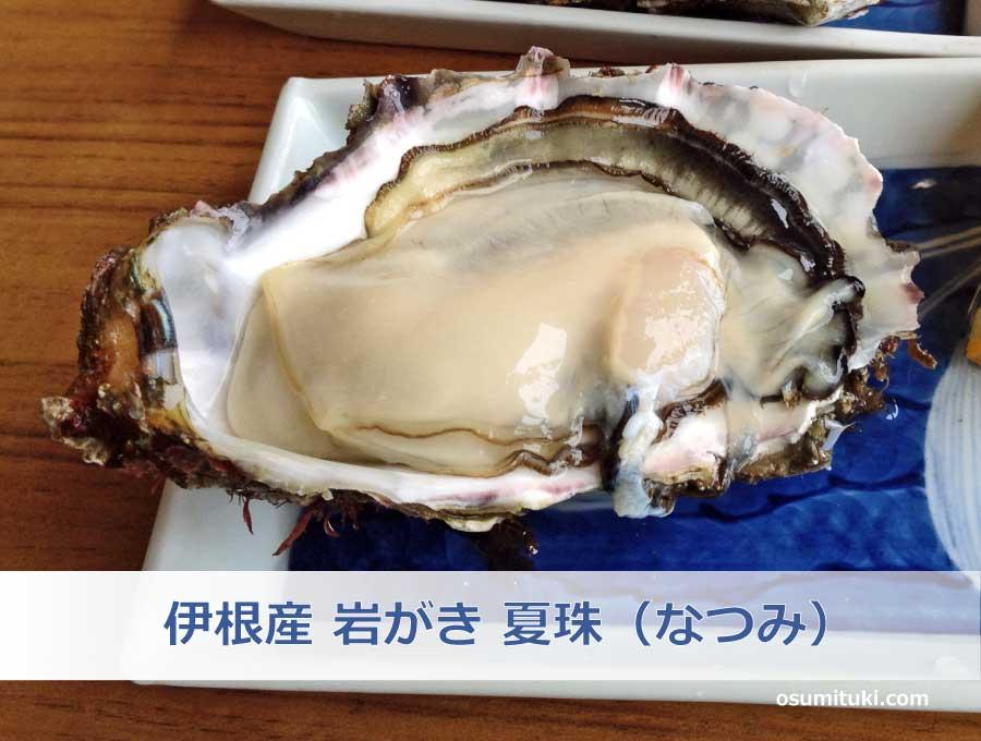 伊根産 岩ガキ 夏珠(なつみ)