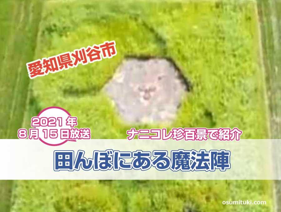 田んぼに魔法陣のようなものが置かれた謎のエリア(愛知県刈谷市)