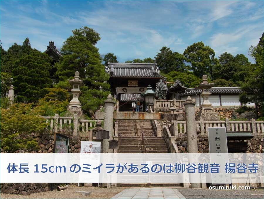 体長15cmのミイラがあるのは柳谷観音 楊谷寺