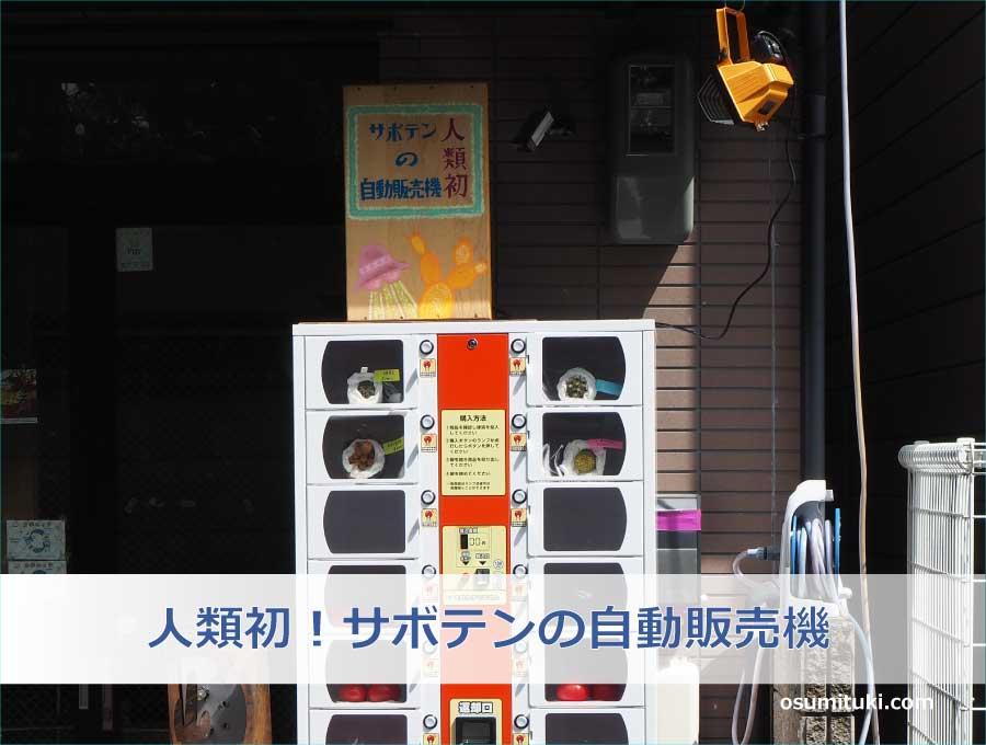 人類初!サボテンの自動販売機