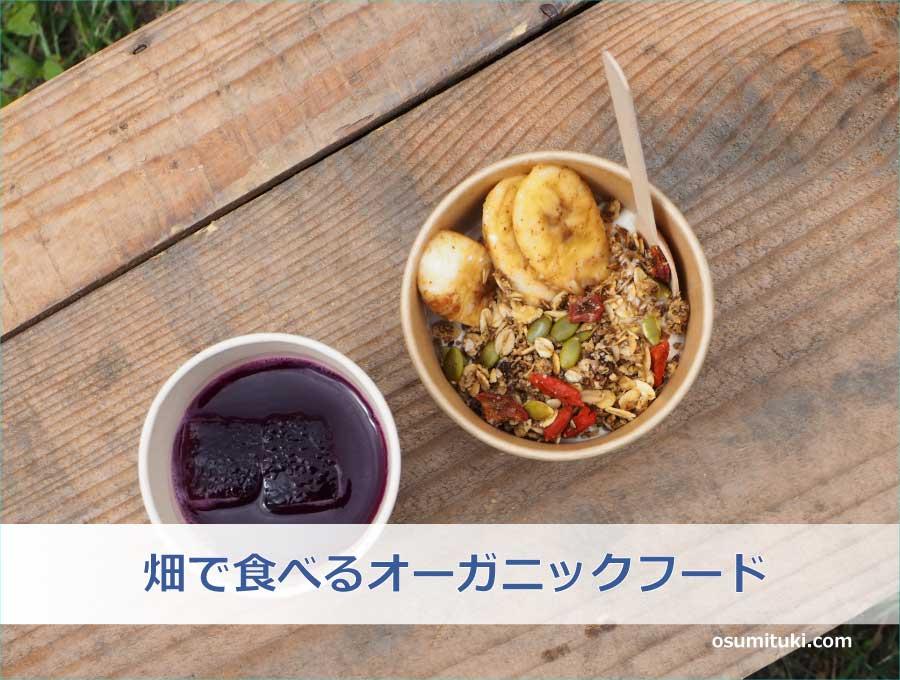 畑で食べるオーガニックフード