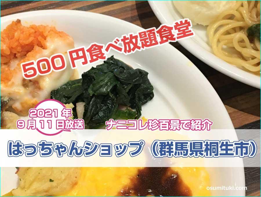 群馬県桐生市の500円食べ放題食堂が【ナニコレ珍百景】で紹介