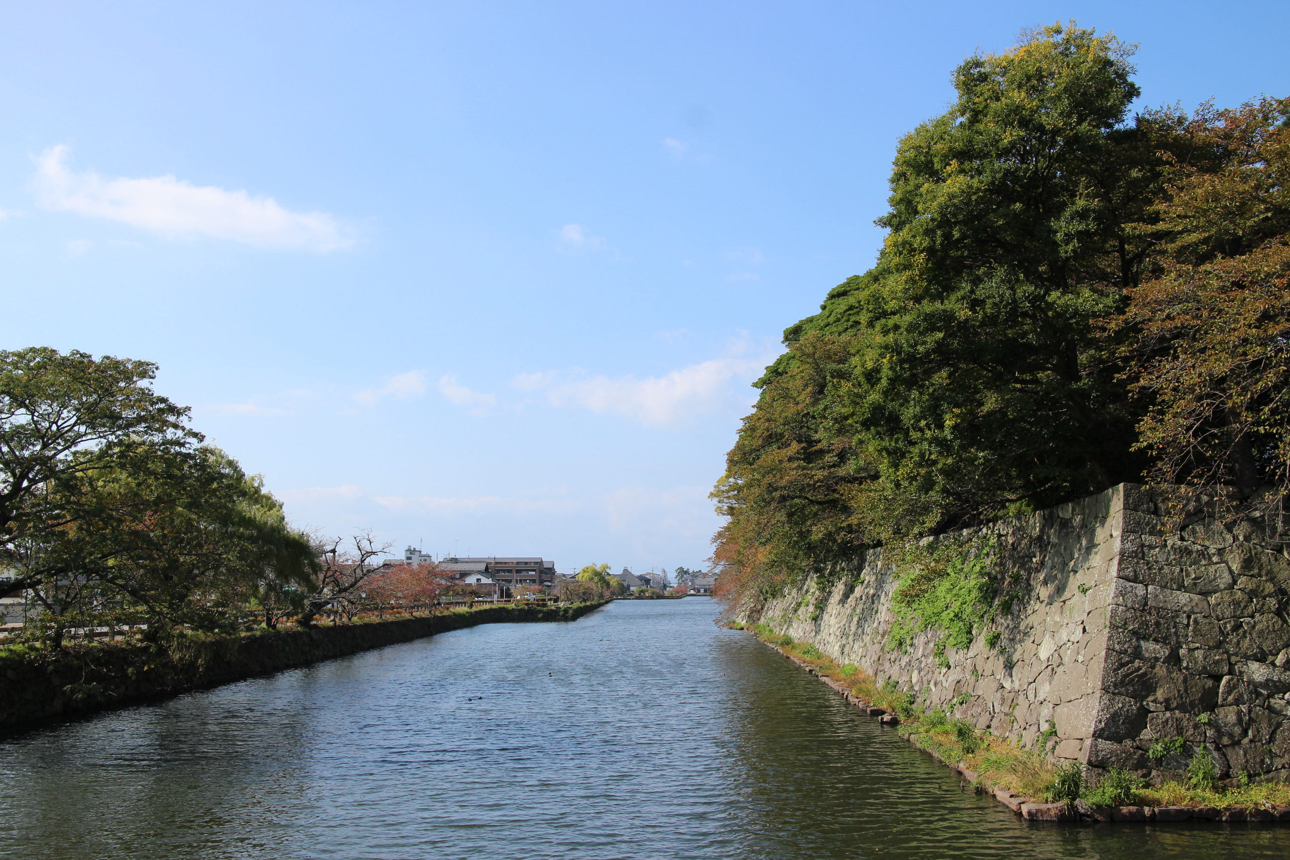 井伊家といえば滋賀県の堅牢な城壁を持つ彦根城です